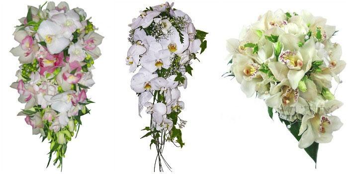 Свадебный букет: орхидеи