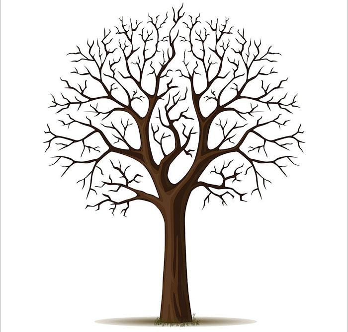 Классический вариант дерева желаний на свадьбу