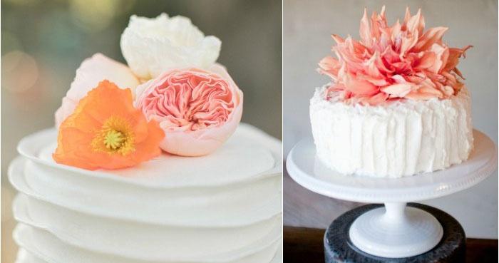 Десерт с живыми коралловыми цветками