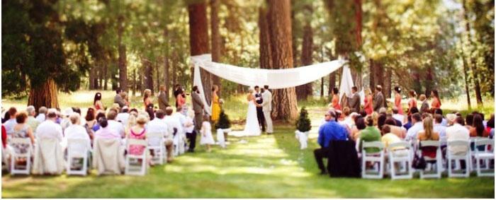 Лесная свадьба: регистрация брака