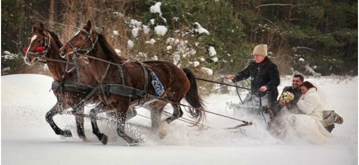 Свадебный кортеж на русскую свадьбу: повозка с лошадьми