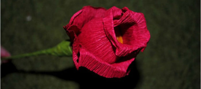 Роза со стеблем для композиции