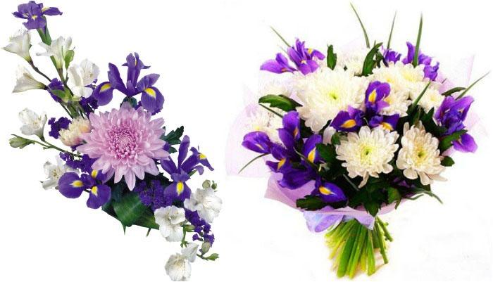 Красивые сочетания хризантем с ирисами