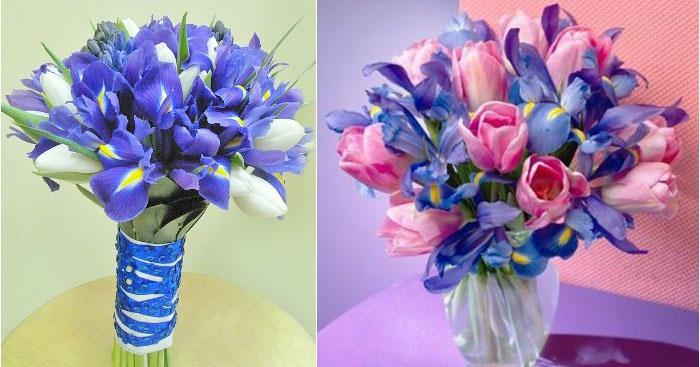 Тюльпаны – отличная компания ирисовым цветам