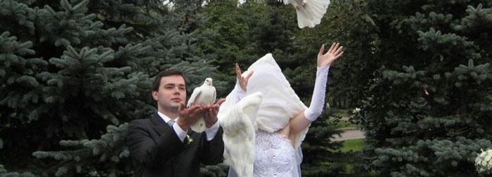 Смешной случай с одеждой на свадьбе