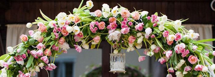 Тюльпановая свадебная арка