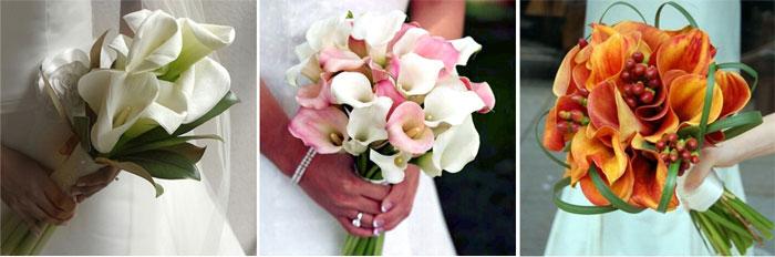 Каллы для букета невесты