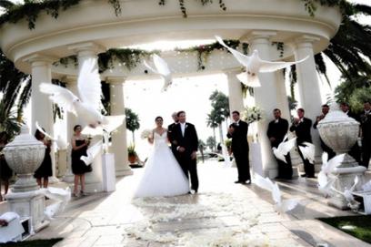 Свадьба с голубями