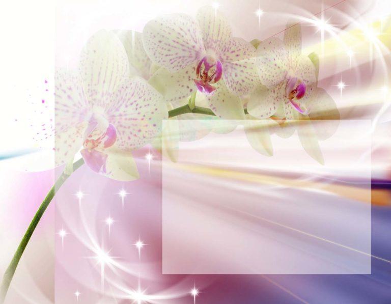 Торговле для, открытка орхидеи для фотошопа